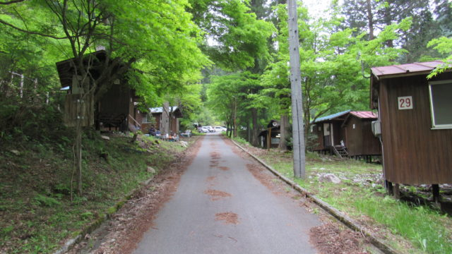 キャンプ場の道