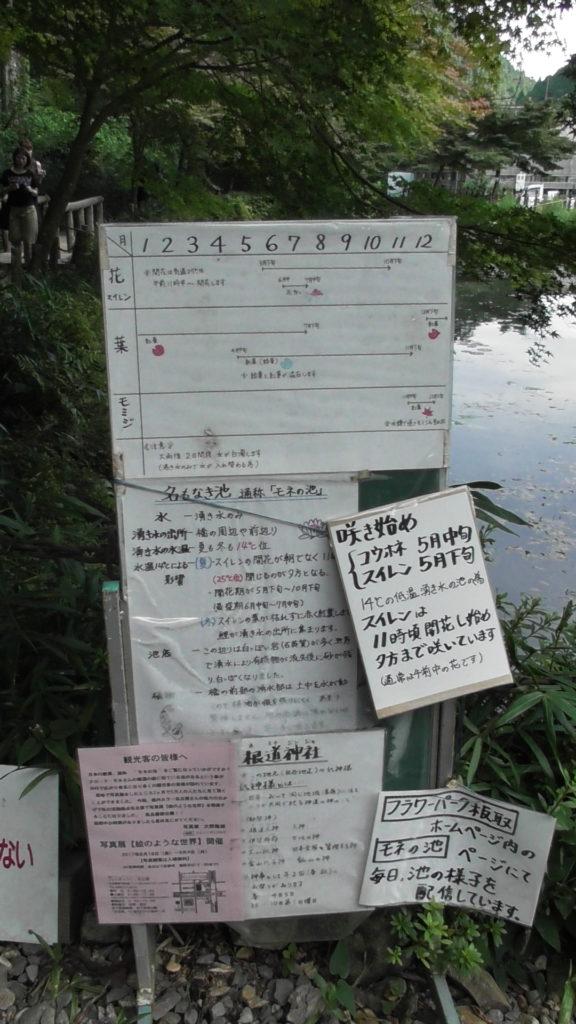 モネの池の看板